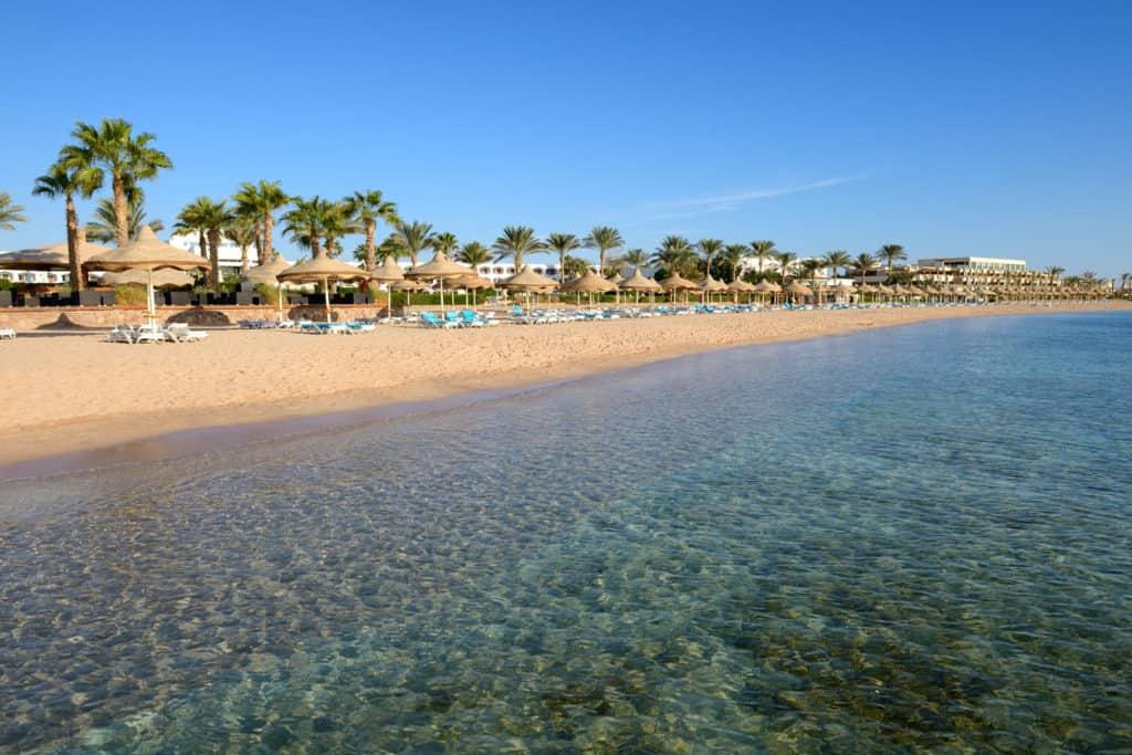 beach with clear sea