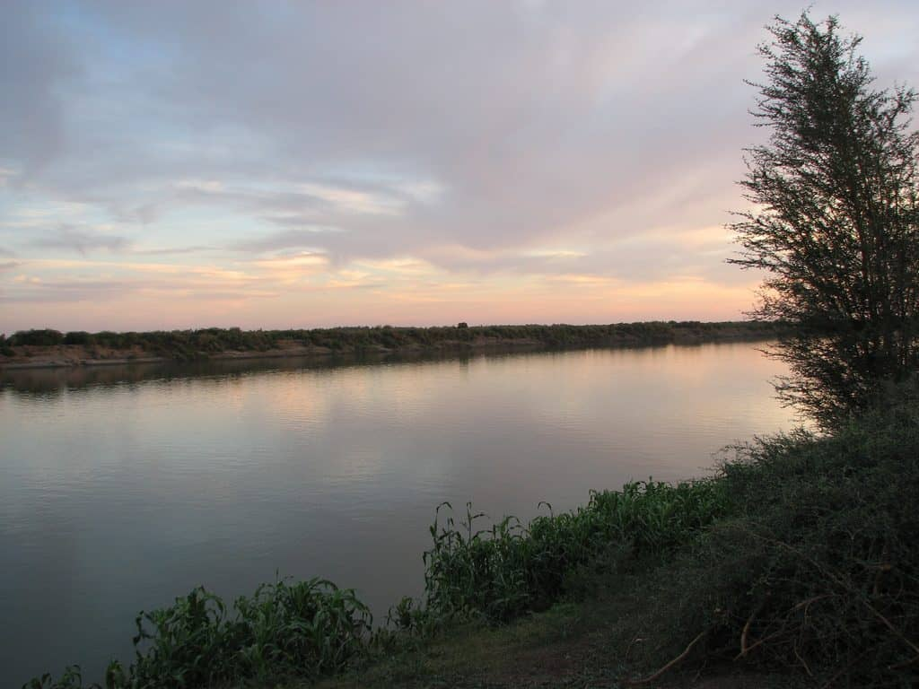 picture off bank of the river nile