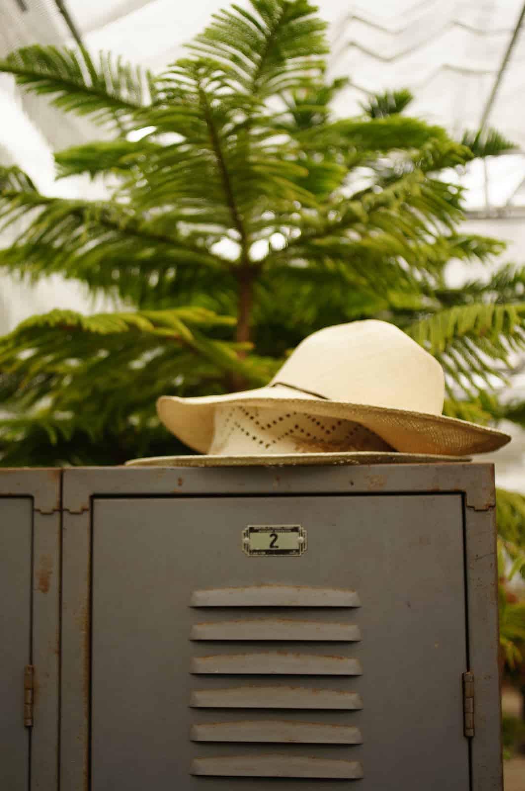 hat on locker